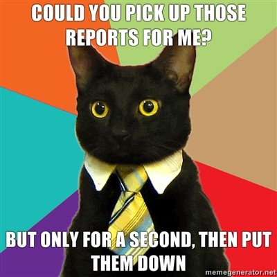 Business Cat: Pick up those reports for me, just for a second, then put them down again