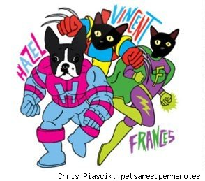 pets are superheroes cat and dog portraits by chris piascik