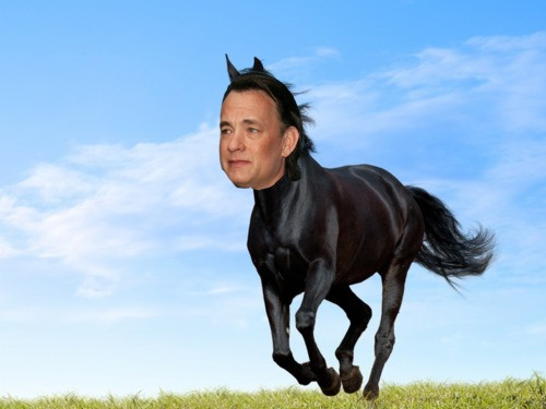 tom hanks horse