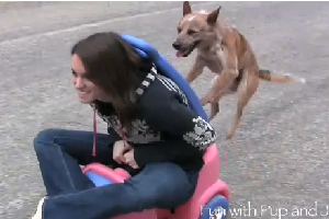 dog pushes girl in toy car