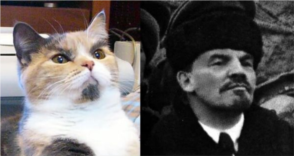 Lenin Cat and actual Lenin