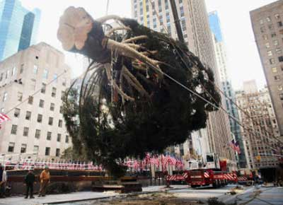 2. How Much Would the Rockefeller Center Tree Cost?