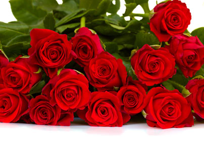Roses Rise in Price to $80 a Dozen at V Day