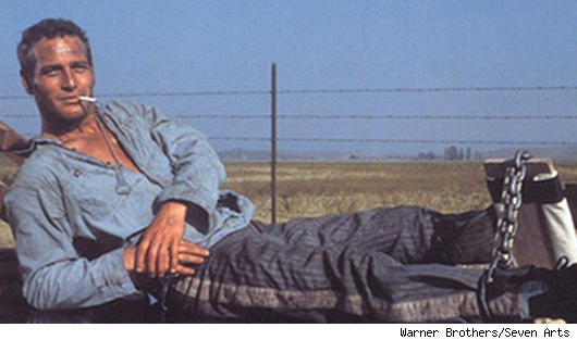 Paul  Newman in 'Cool Hand Luke'