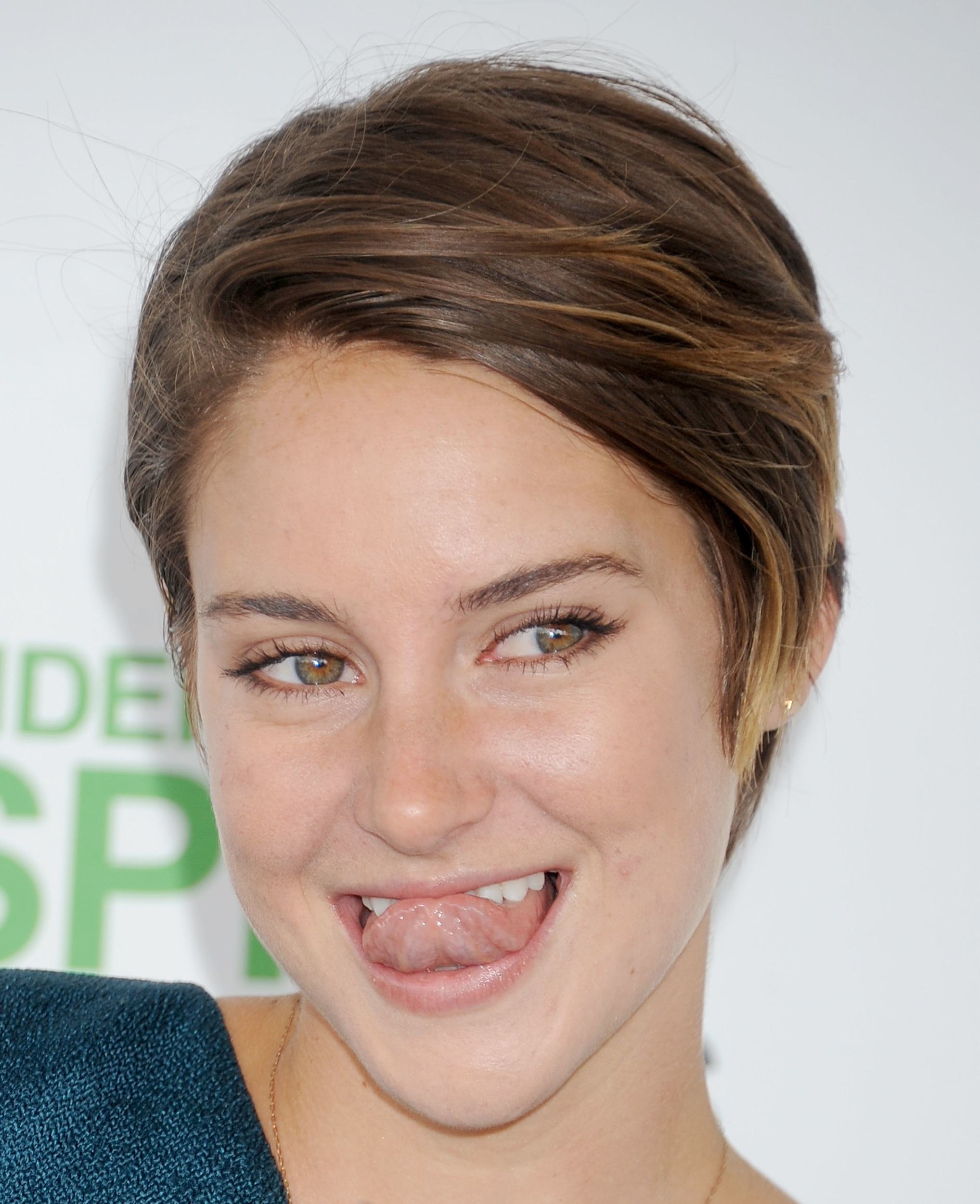 Who is theo james dating shailene woodley 7