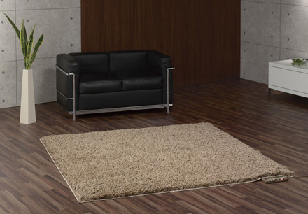 Electric Heated Rugs Ideas