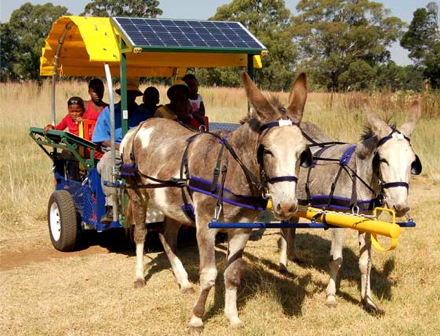 Solar Powered Donkey Carts Bring Power To African Villages